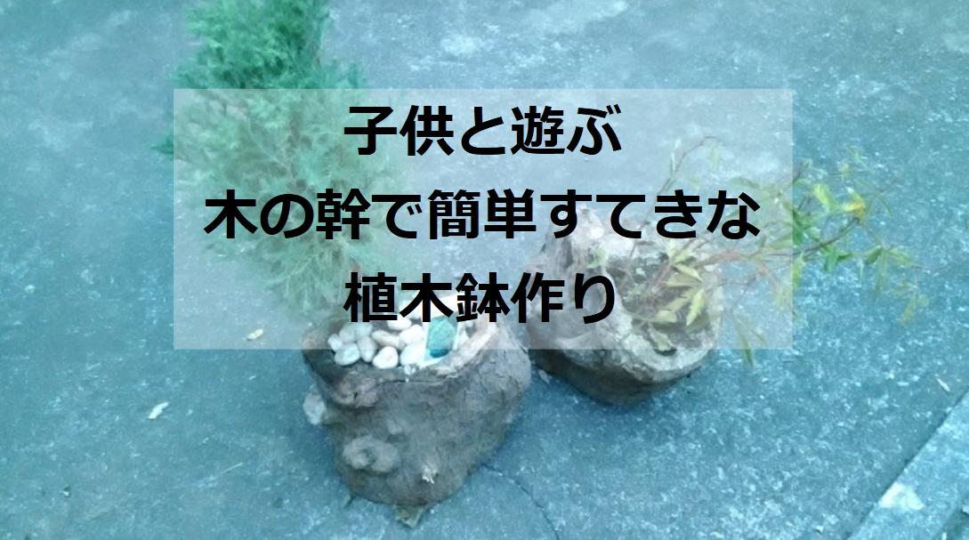 子供と作る幹から植木鉢
