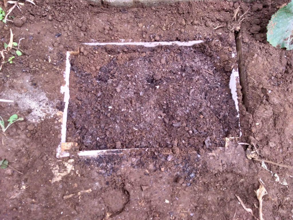 土と肥料を入れ込み