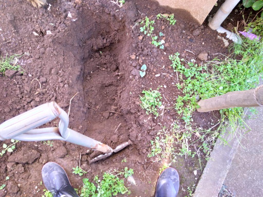 掘っていきます。