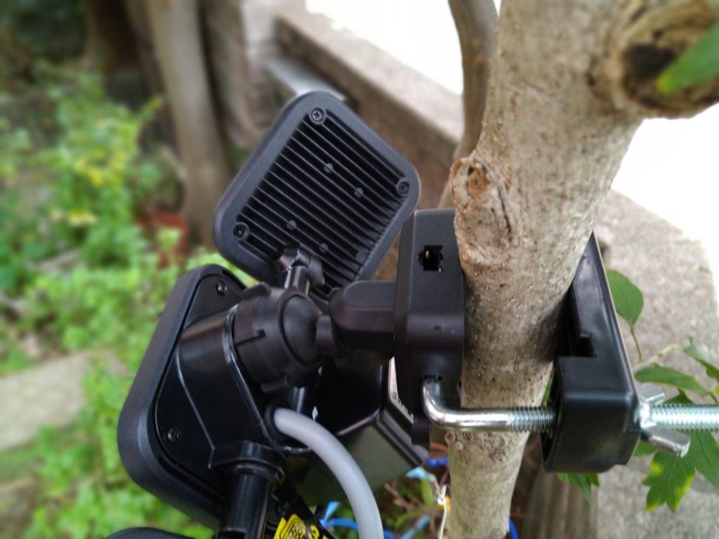 木の幹に固定